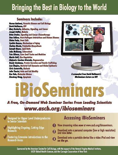 ibioseminars.jpg
