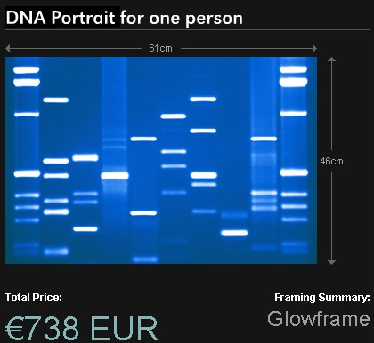 dna-portrait.jpg