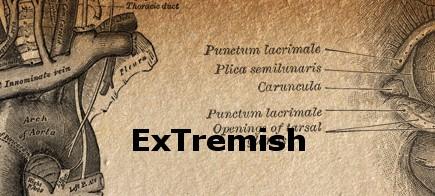 extremish