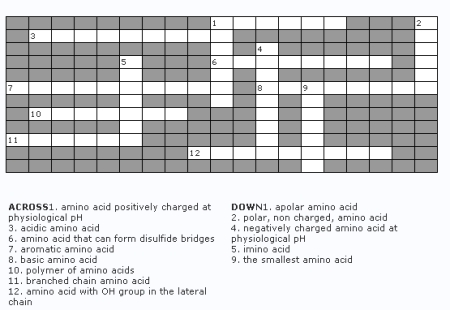 amino-acid-crossword