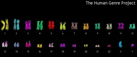 human genre project