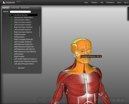 Human Anatomy Health And Medical News And Resources